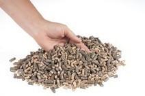 Commission européenne : CORDIS : Service Projets et résultats : La biomasse directement transformée en carburant   GRANULE ET PELLET ENERGIE France   Scoop.it