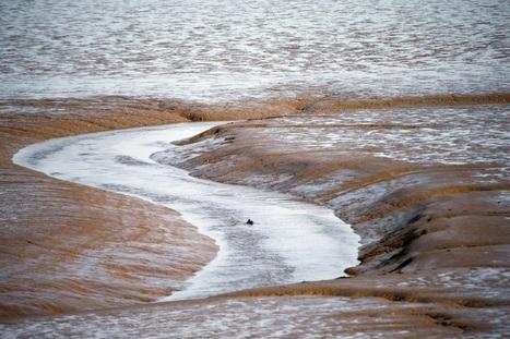 Nuevo sistema para obtener energía renovable de la unión de mares y ríos | landscape ecology | Scoop.it