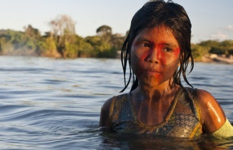 Giant Amazon Dam Stalled Again – Indigenous Voices to be Heard? | Preservation of Indigenous Ethnobotanical Practice | Scoop.it