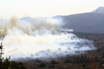 Climate change driving massive wildfires in Southwest | Climate change challenges | Scoop.it