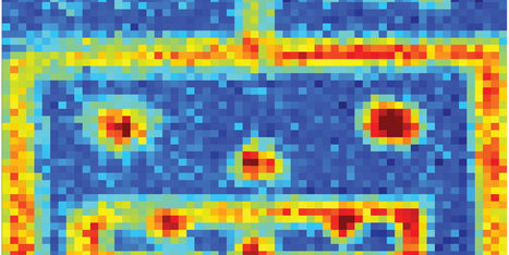 A New Microscopic Camera Lets Us Peer Inside All the Things We Normally Can't See | New Science | Scoop.it