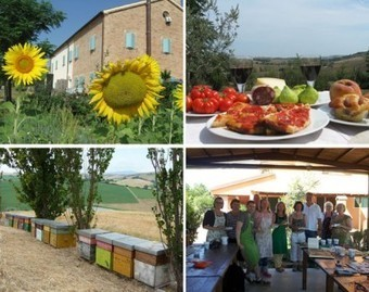 Residential Mosaic Course in Le Marche, Italy | Le Marche another Italy | Scoop.it