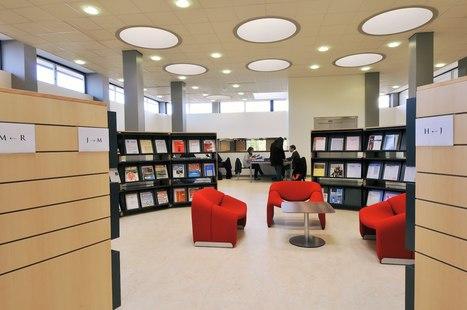 Bibliothèques et numérique : Bulletin des Bibliothèques de France | Le livre numérique : quelle bibliothèque pour demain? | Scoop.it