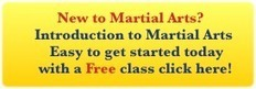 Martial arts and understand our self - Boston Martial Arts Center | Guang Ming Wushu Amsterdam | Scoop.it