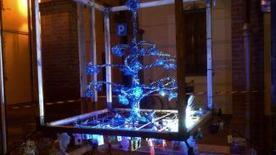 Il Natale si 'ricicla': un albero ecosostenibile a Bagnara - il Resto del Carlino - Ravenna   Città sostenibile e sostenuta - Eco-towns   Scoop.it