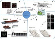 Miniaturized pre-clinical cancer models as research and diagnostic tools | Micropatterns | Scoop.it