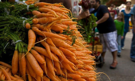 Carrot compound may ward off cancer, heart disease - Indian Express | JMS1 health and wellness | Scoop.it