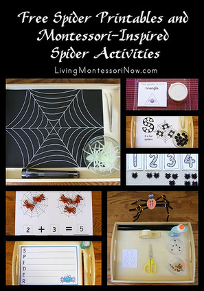 Free Spider Printables and Montessori-Inspired Spider Activities | Montessori Inspired | Scoop.it