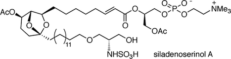 Siladenoserinols A–L: New Sulfonated Serinol Derivatives from a Tunicate as Inhibitors of p53–Hdm2 Interaction | natural product | Scoop.it