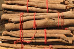 Health Benefits of Cinnamon and Honey   Herbs   Scoop.it
