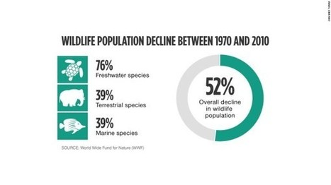How Did Half of the World's Wildlife Vanish in 40 Years? | GarryRogers NatCon News | Scoop.it