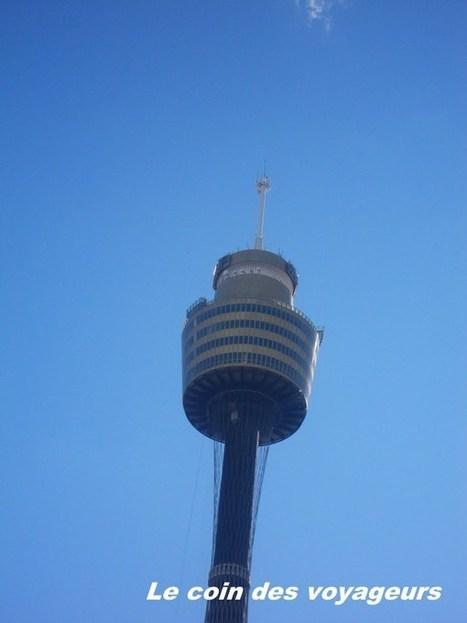 Australie : La vues de la Sydney Tower | Voyager avec ses enfants : l'Australie en famille | Scoop.it