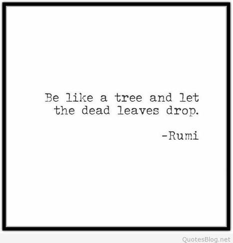 Be like a tree quote | Wallpapers | Scoop.it