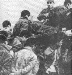 Gendercide Watch: The Nanjing Massacre | Nanking + Holodomor | Scoop.it
