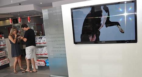 L'ouverture ou la rénovation d'une clinique vétérinaire | Métier veterinaire | Scoop.it