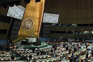 Les crimes contre la nature menacent l'état de droit   BIODIVERSITÉ - WWF   Scoop.it