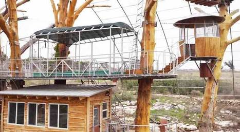Zip-sliding Into Your Own Tiny Tree House In Austin! | ultralight living | Scoop.it