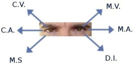 Détection des mensonges | Global hot news | Scoop.it