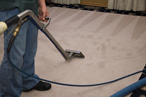 Hire A Professional Carpet Cleaning Service Rendering Company | wizardcleaning | Scoop.it
