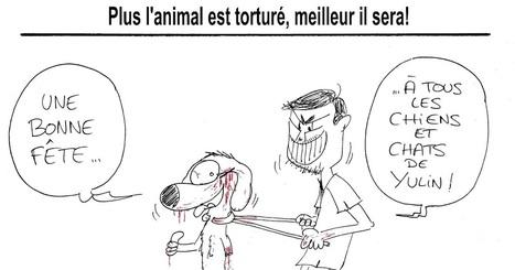 Bramley: Le 21 juin c'est le festival de Yulin en Chine : le paroxysme de la maltraitance animale | Modern dog training methods and dog behavior | Scoop.it