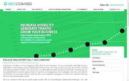 Seo Singapore - Professional Profile & Bio at Ziggs | SEO & Search Engine Marketing | Scoop.it