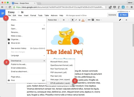 How to Make eBooks with Google Docs | E-learning, Blended learning, Apps en Tools in het Onderwijs | Scoop.it