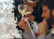 Quels sont les couts de la viticulture bio? Découvrez des retours de vignerons dans cet article. | Les filières bio | Scoop.it