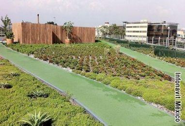 Azoteas Verdes. | Cultivos Hidropónicos | Scoop.it