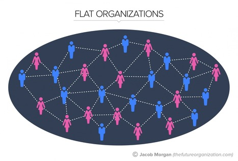 The 5 Types Of Organizational Structures: Part 3, Flat Organizations | Organisation Development | Scoop.it