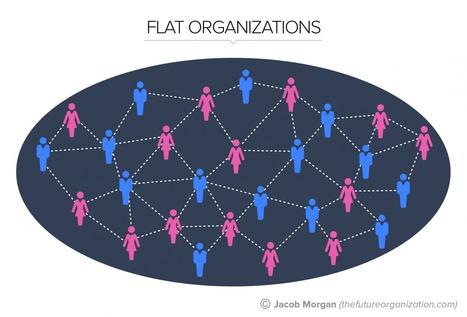 The 5 Types Of Organizational Structures: Part 3, Flat Organizations | Organisation Development | Scoop.it