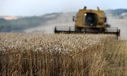 British farmers best served by UK staying in EU, says NFU | Economics in Education | Scoop.it