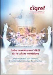 Le Cigref publie un livre blanc pour estimer la maturité numérique des entreprises et ainsi pouvoir l'accroître. | Réseau social entreprise | Scoop.it
