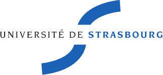 Enquêtes sur les usages à l'université-Services numériques de l'Université de Strasbourg | Recherche sur l'usage du numérique dans l'enseignement | Scoop.it