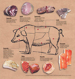 Meat Charts - The Virtual Weber Bullet | Butchering | Scoop.it