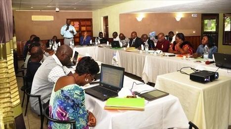 La direction générale adjointe chargée de la commercialisation fait ... - Abidjan.net   FILIERE CAFE CACAO EN COTE D'IVOIRE   Scoop.it