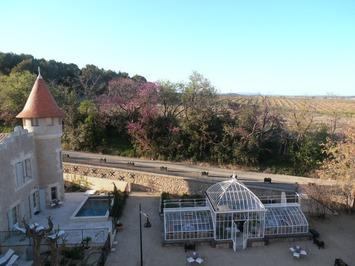 Picpoul de Pinet, un succès mérité en Languedoc ! | Le meilleur des blogs sur le vin - Un community manager visite le monde du vin. www.jacques-tang.fr | Scoop.it