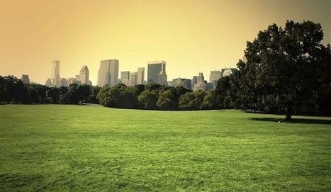 Ciudades más verdes significan personas sanas y felices   Positivisme ambiental   Scoop.it