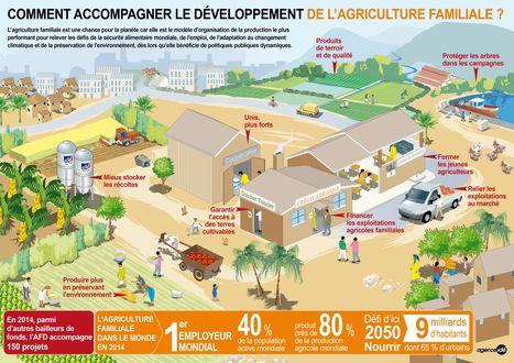 infographie-afd-agriculture-familiale.jpg | entreprise française | Scoop.it