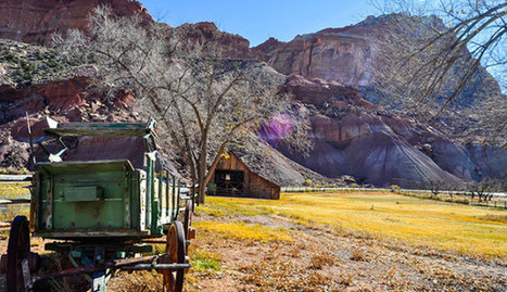 4 Things to See at Capitol Reef National Park | AmeriKat | Scoop.it