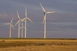 Croissance verte : des experts critiquent le manque de réponse globale | CAP21 Le Mouvement | Scoop.it