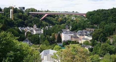 Quand le numérique gère les arbres de la ville de Luxembourg   Damien CADOUX   Scoop.it
