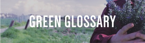 (EN) - Green Glossary | eoproducts.com | Glossarissimo! | Scoop.it