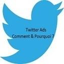 Comment et pourquoi faire de la publicité sur Twitter ? - Mikael Witwer | Mikael Witwer Blog | Scoop.it