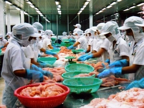 Vietnam to become global seafood processing centre | Aquaculture Directory | Aquaculture Directory | Scoop.it