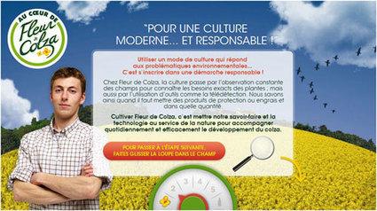 La campagne Huile de colza de Lesieur est-elle du greenwashing ? | éco-attitude et consommation responsable | Scoop.it