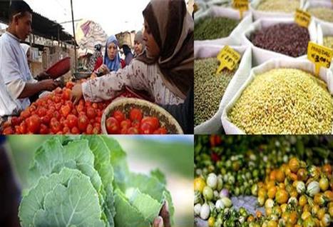 Centre d'actualités de l'ONU - Les prix des produits alimentaires ont augmenté de 10% sur un an, selon la FAO | décroissance | Scoop.it