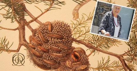 Rosser's Banksia devotion | Australian Plants on the Web | Scoop.it