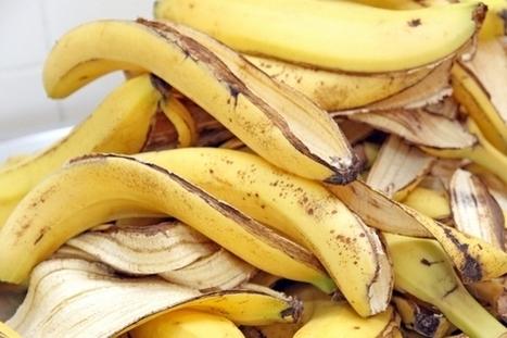 Des sacs en fibres de banane pour remplacer le plastique | Innovations urbaines | Scoop.it