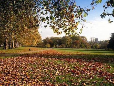 Royal Parks   Tourism in London :)   Scoop.it