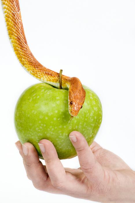 6 SEO Sins That'll Put You on Google's Naughty List - Boost Blog Traffic | Digital Marketing Power | Scoop.it